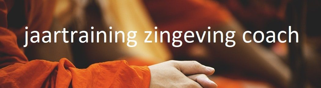 zingeving, zingeving coach, jaartraining zingeving